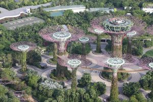Gardens by the bay4