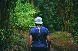 manoa falls viajes a medida y viajes de novios