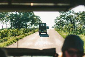 kruger 1 viajes a medida y viajes de novios